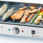 Električni roštilj je naprava za družabne ljudi
